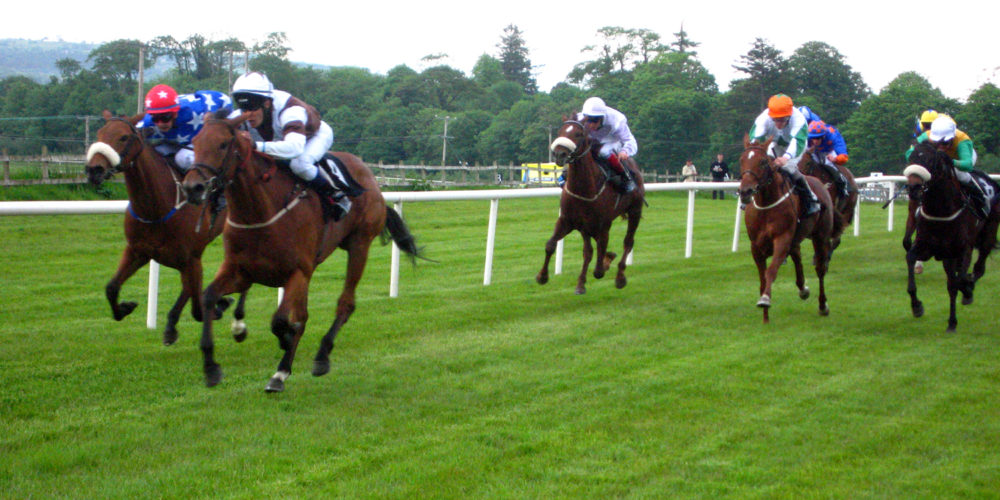 Horse results racing