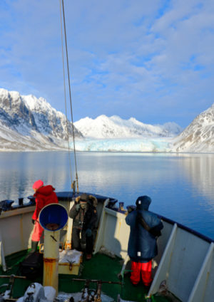 The Top Arctic Cruises