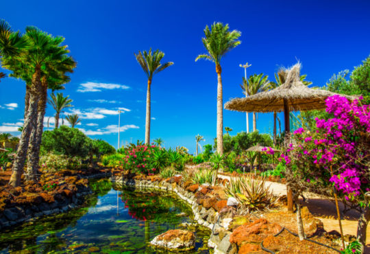 Beautiful view to tropical island resort garden on Fuerteventura, Canary Islands