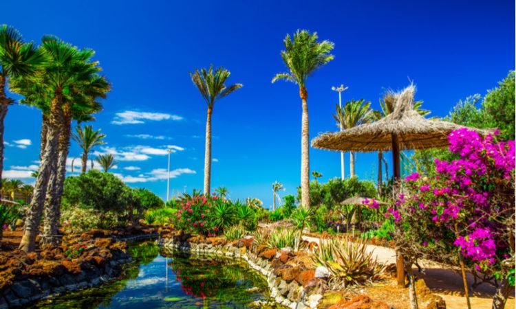 Beautiful view to tropical island resort garden on Fuerteventura, Canary Islands